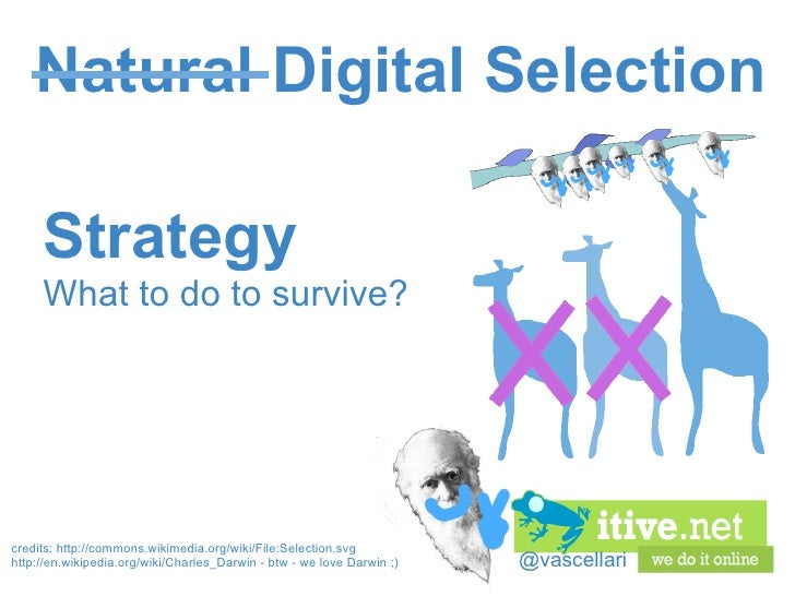 @vascellari Natural Digital Selection Strategy What to do to survive? credits:http://commons.wikimedia.org/wiki/File:Sele...