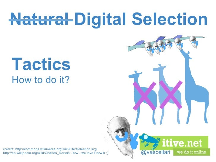 @vascellari Natural Digital Selection Tactics How to do it? credits:http://commons.wikimedia.org/wiki/File:Selection.svg ...