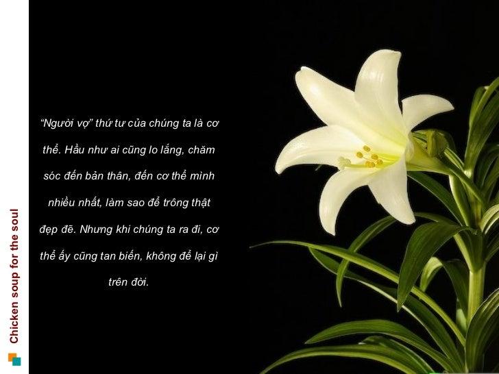 """"""" Người vợ"""" thứ tư của chúng ta là cơ thể. Hầu như ai cũng lo lắng, chăm sóc đến bản thân, đến cơ thể mình nhiều nhất, làm..."""