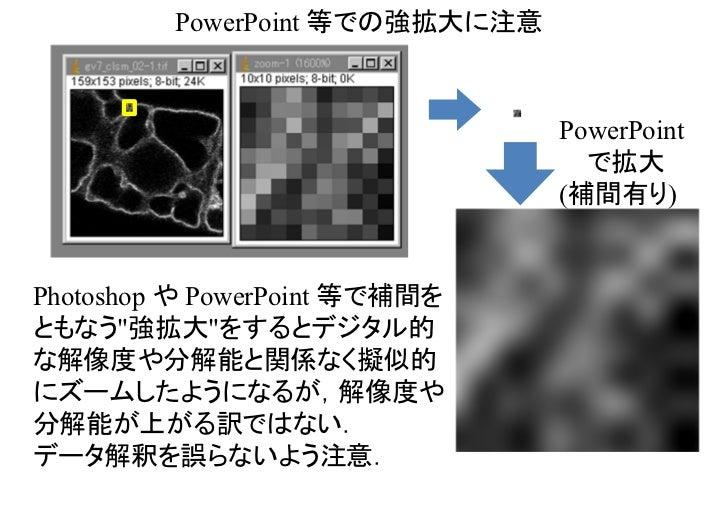 PowerPoint 等での強拡大に注意                                PowerPoint                                  で拡大                       ...