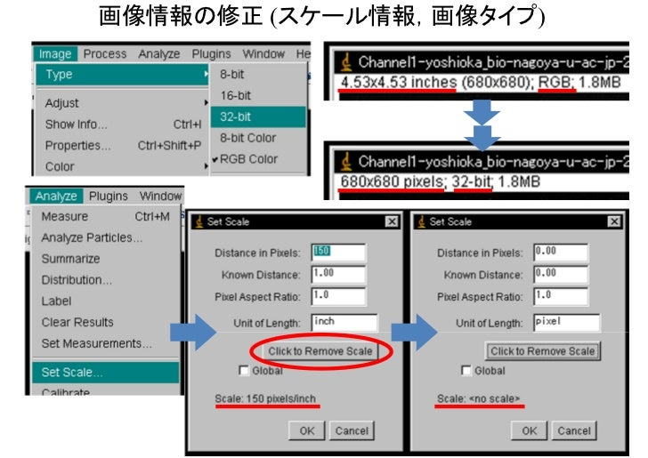 画像情報の修正 (スケール情報,画像タイプ)