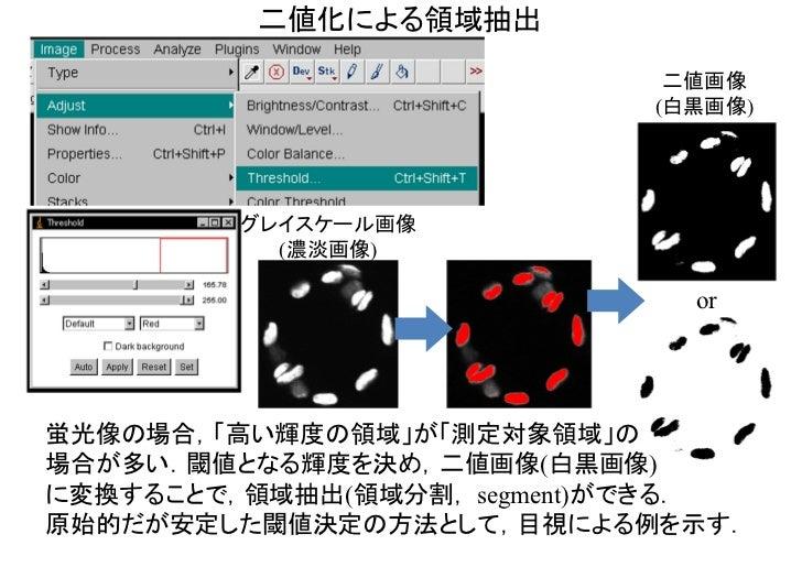 二値化による領域抽出                             二値画像                            (白黒画像)         グレイスケール画像           (濃淡画像)          ...