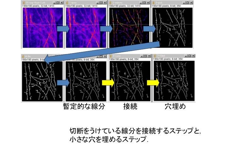 細線化(2度目).各領域を太さ1画素の線分になるまで細くする.直前の穴埋めステップによって線分でなくなっている領域があるため.                           穴埋め                 枝刈り.線分にはノイズに...