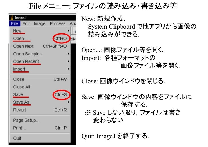 Edit メニュー: 画像の切り貼り,描画      Undo: 直前の作業の取消し.       1ステップ限定かつ       一部のみ対応.      Cut, Copy, Paste:       画像の切り貼り.       対象は画...