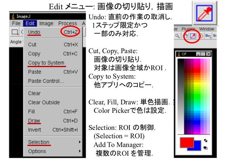 Image メニュー: 種別,色,スタック,変形,複製等,色々           Type: 輝度タイプの変換.                  8-bit, 16-bit, 32-bit, RGB color...           A...