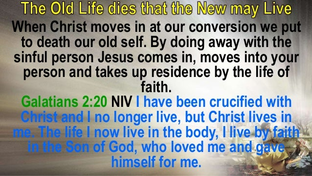 If we do not set up the life of faith Jesus cannot live in us. It is through faith Christ dwells in our hearts. Ephesians ...