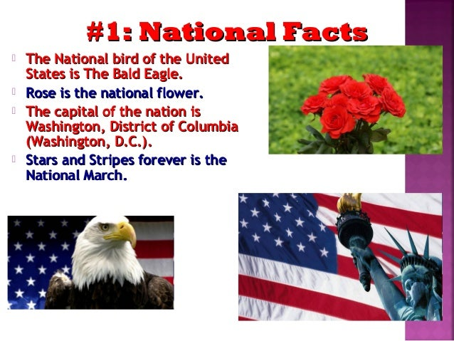 Amazing facts about the usa for Interesting facts of usa