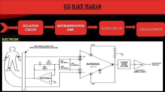 Report on ecg ecg block diagram ccuart Images