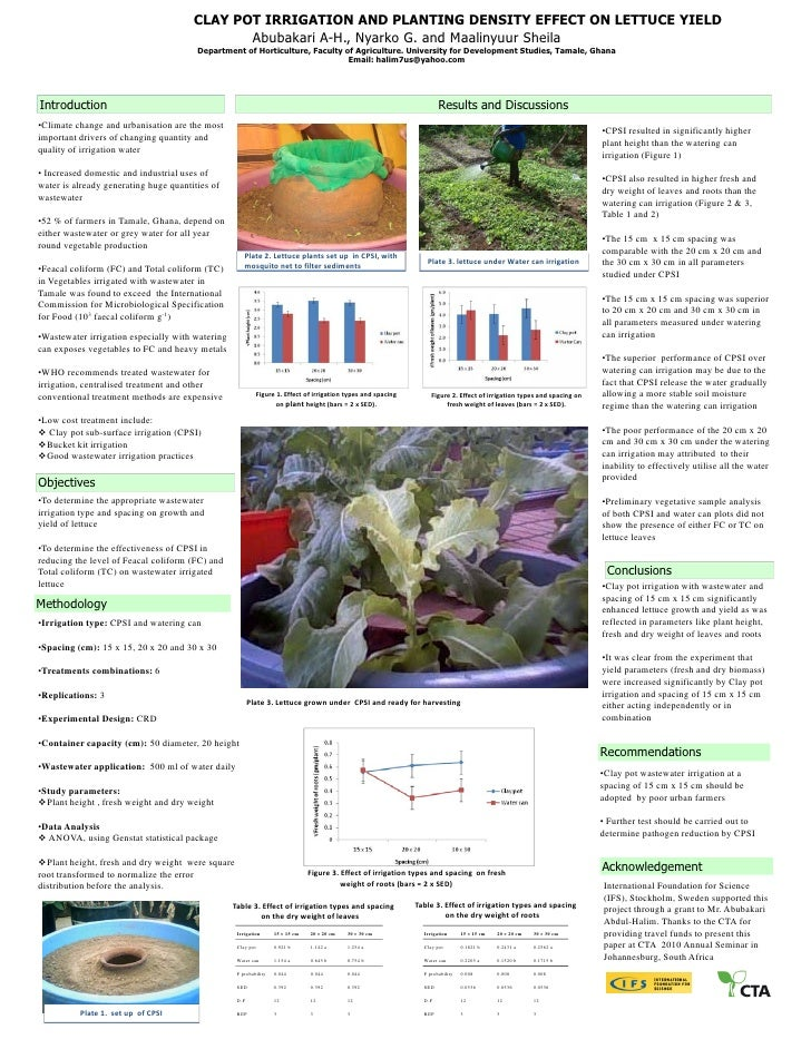 CLAY POT IRRIGATION AND PLANTING DENSITY EFFECT ON LETTUCE YIELD                                              Abubakari A-...