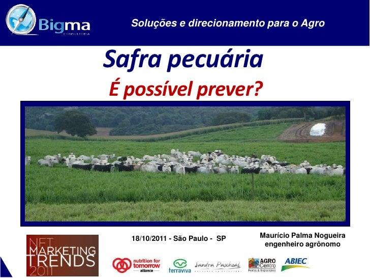 SAFRA PECUÁRIA: É POSSÍVEL PREVER?  Soluções e direcionamento para o AgroSafra pecuáriaÉ possível prever?  18/10/2011 - Sã...