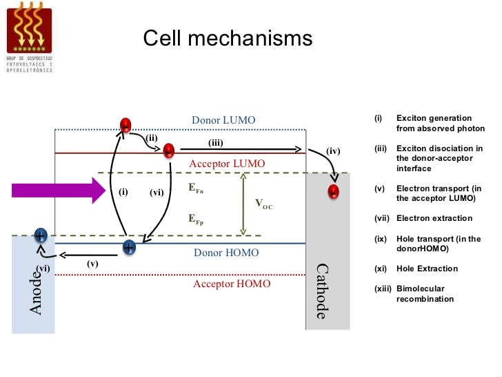 Models For Organic Solar Cell And Impedance Spectroscopy