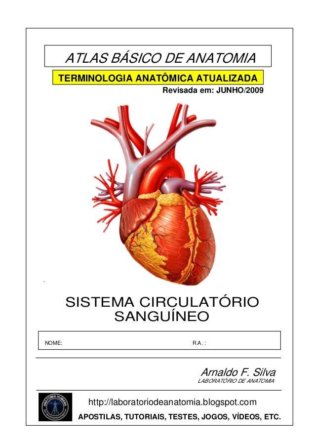 ATLAS BÁSICO DE ANATOMIA TERMINOLOGIA ANATÔMICA ATUALIZADA Revisada em: JUNHO/2009  ´  SISTEMA CIRCULATÓRIO SANGUÍNEO NOME...