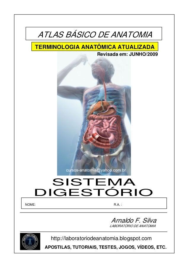 ATLAS BÁSICO DE ANATOMIA TERMINOLOGIA ANATÔMICA ATUALIZADA Revisada em: JUNHO/2009  SISTEMA DIGESTÓRIO NOME:  R.A. :  Arna...