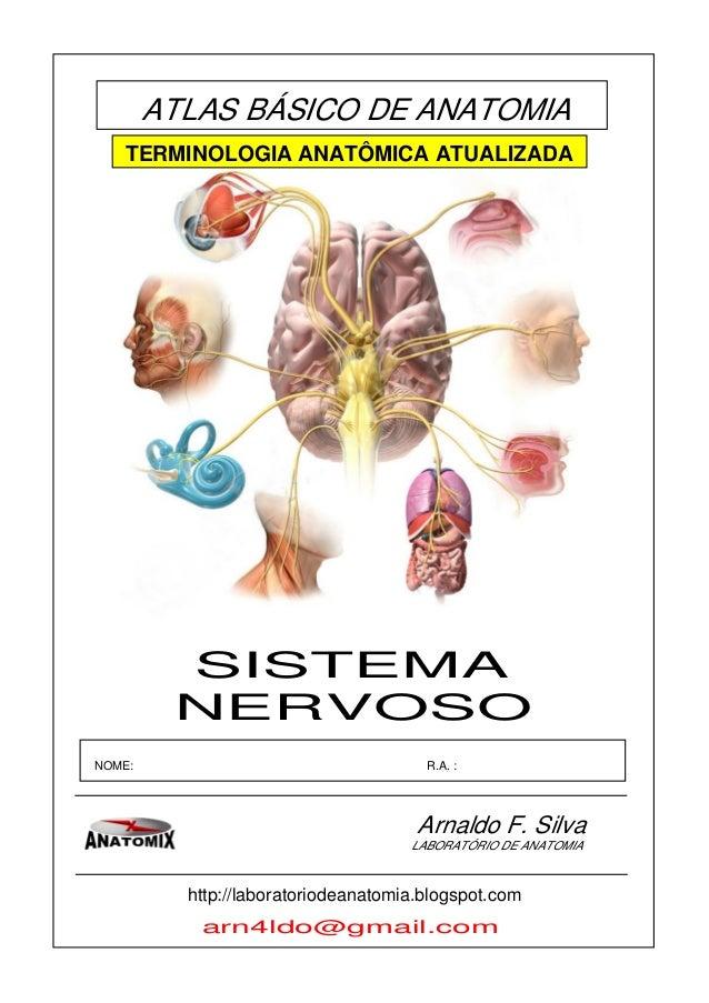 ATLAS BÁSICO DE ANATOMIA Arnaldo F. Silva NOME: R.A. : LABORATÓRIO DE ANATOMIA arn4ldo@gmail.com NERVOSO SISTEMA http://la...