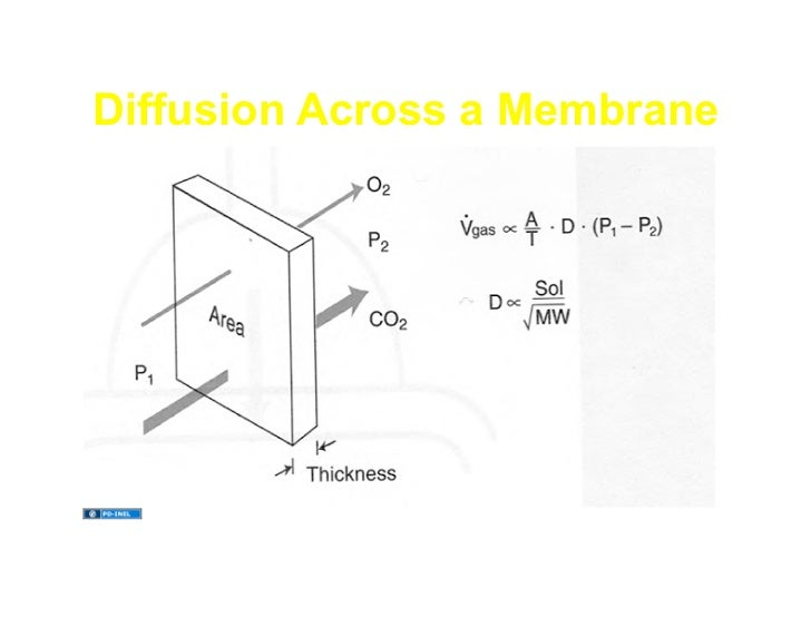 11.18.08(c): Diffusion of Gases