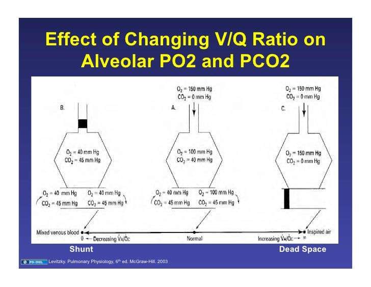 Ventilation Perfusion Ratio : Ventilation perfusion matching