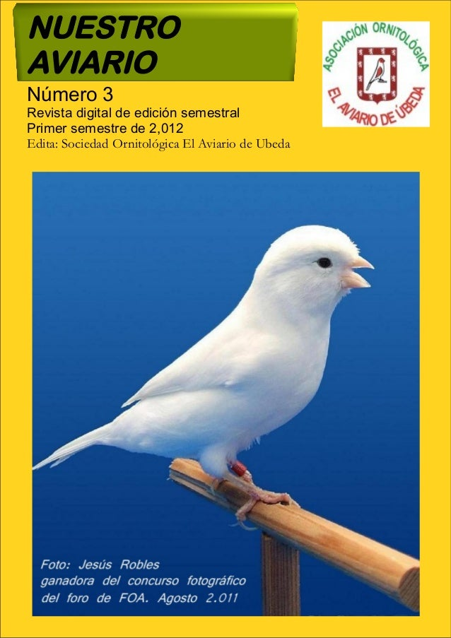 NUESTRO AVIARIO Número 3 Revista digital de edición semestral Primer semestre de 2,012 Edita: Sociedad Ornitológica El Avi...