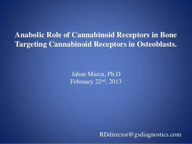 Anabolic Role of Cannabinoid Receptors in BoneTargeting Cannabinoid Receptors in Osteoblasts.                Jahan Marcu, ...