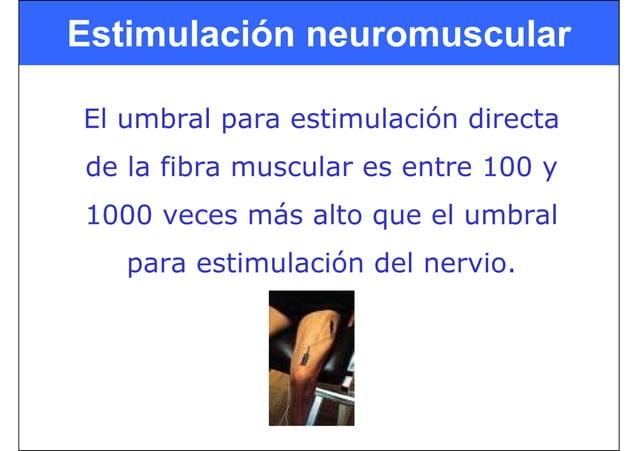 El umbral para estimulación directa de la fibra muscular es entre 100 y 1000 veces más alto que el umbral para estimulació...