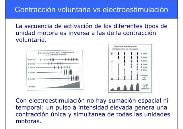 Contracción voluntaria vs electroestimulación La secuencia de activación de los diferentes tipos de unidad motora es inver...