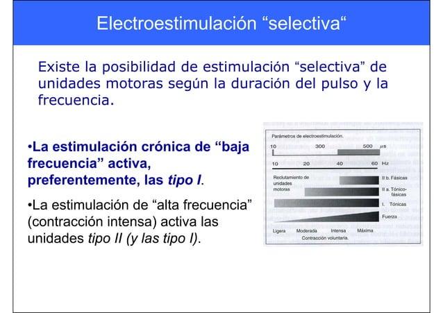 """Electroestimulación """"selectiva"""" Existe la posibilidad de estimulación """"selectiva"""" de unidades motoras según la duración de..."""