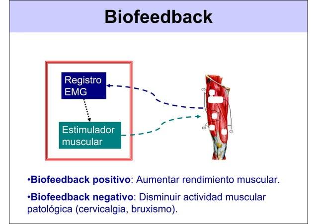 Biofeedback Registro EMG Estimulador muscular •Biofeedback positivo: Aumentar rendimiento muscular. •Biofeedback negativo:...