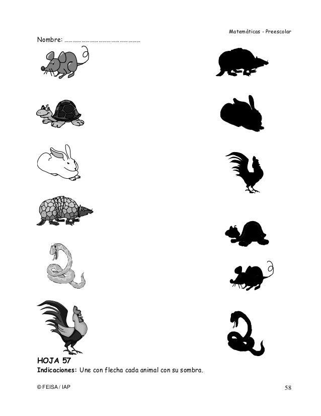 Asombroso Animales Y Sus Hogares Fotos Hojas De Trabajo Composición ...