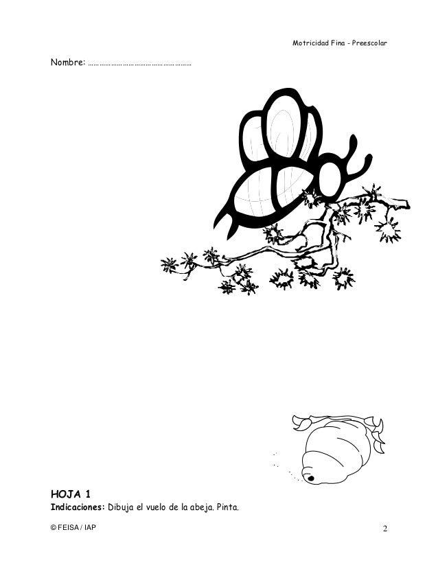 11455141 motricidad-fina-hojas-de-trabajo-preescolar
