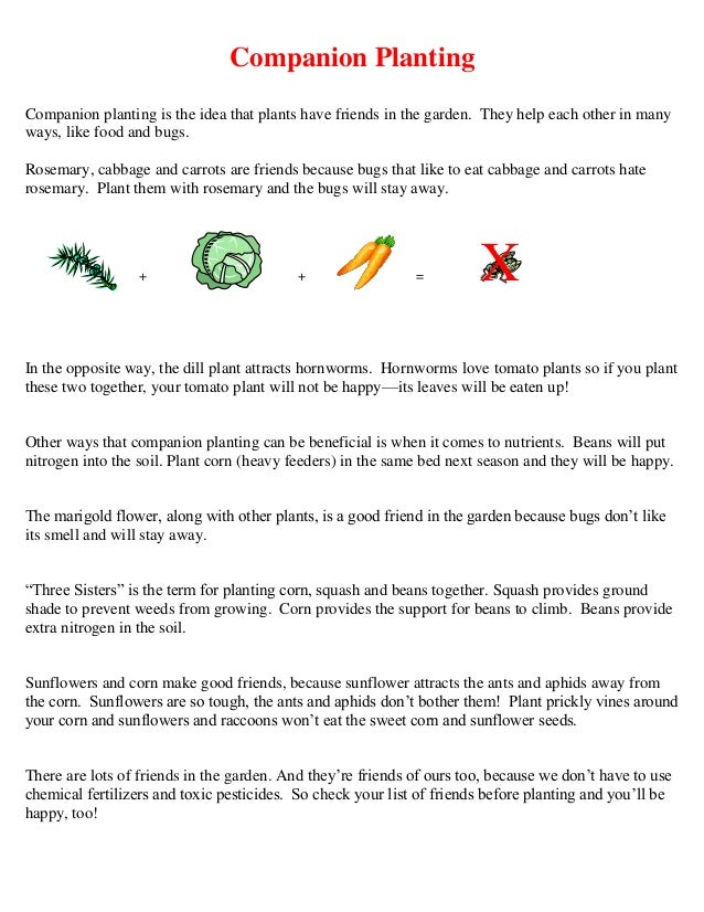 Companion PlantingCompanion planting is the idea that plants have friends in the garden. They help each other in manyways,...