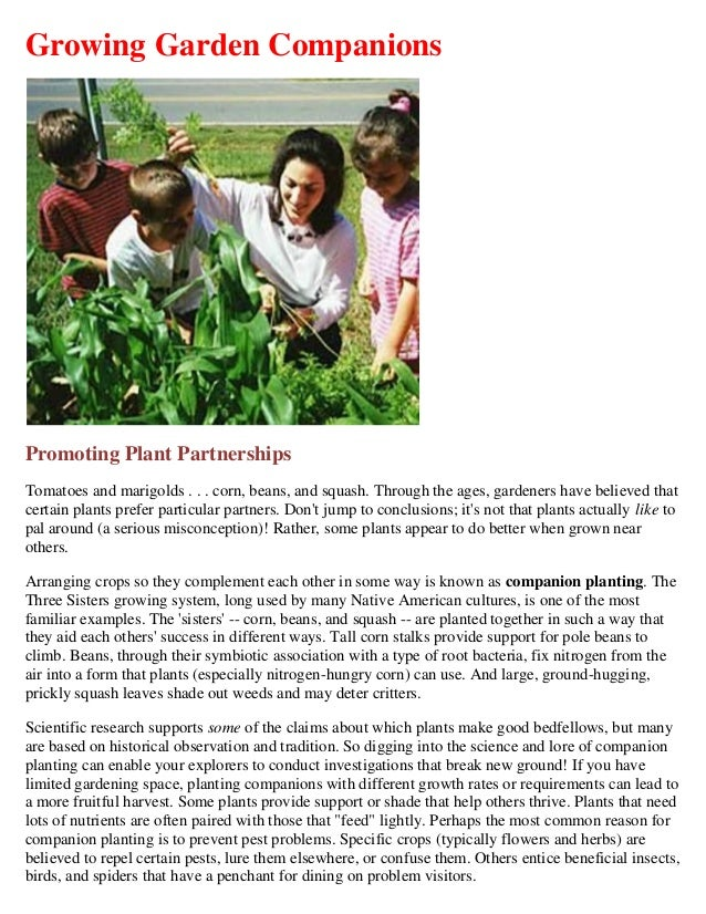 Growing Garden CompanionsPromoting Plant PartnershipsTomatoes and marigolds . . . corn, beans, and squash. Through the age...