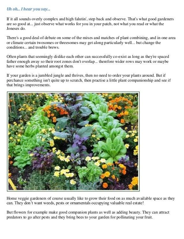 Vegetable Gardening Plant Combinations Companion Planting No Dig W – Sample Companion Planting Chart