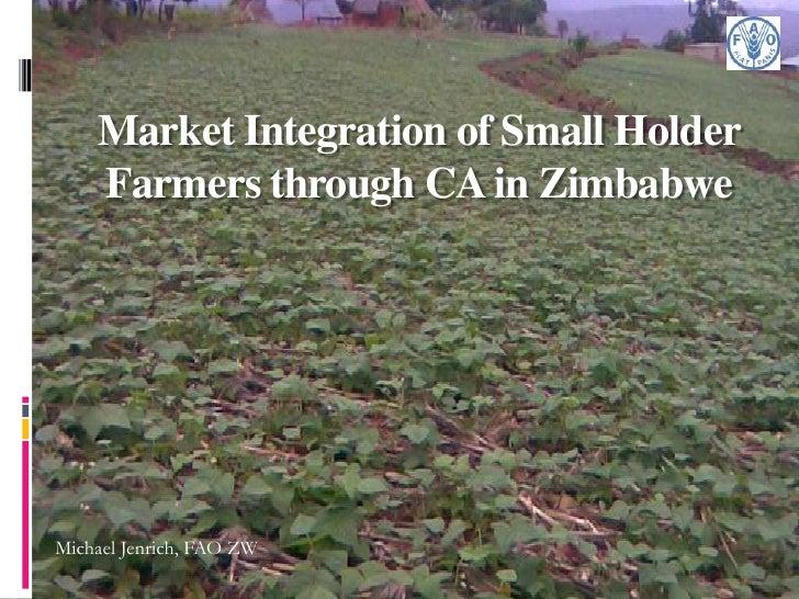 Market Integration of Small Holder    Farmers through CA in ZimbabweMichael Jenrich, FAO ZW