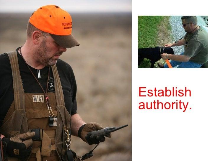 pic Establish authority.