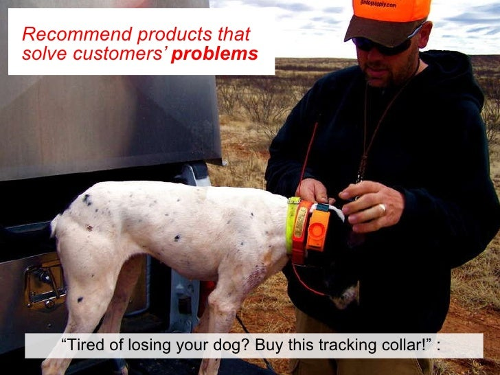 """Recommend products that solve customers'  problems   """" Tired of losing your dog? Buy this tracking collar!"""" :"""