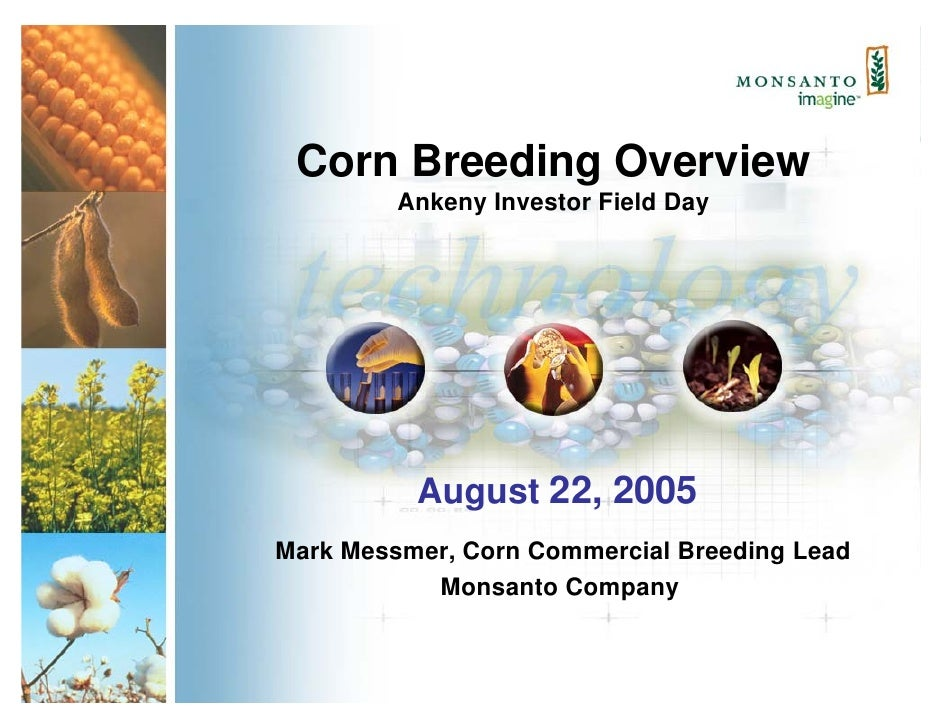 Corn Breeding Overview          Ankeny Investor Field Day               August 22, 2005 Mark Messmer, Corn Commercial Bree...