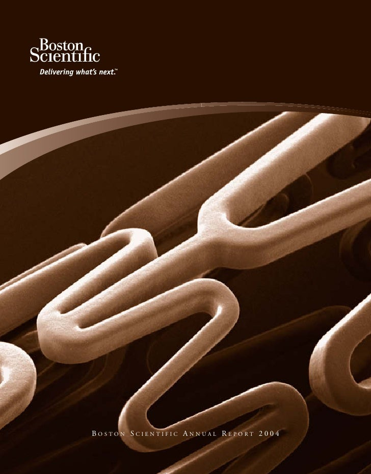 BOSTON SCIENTIFIC ANNUAL REPORT 2004