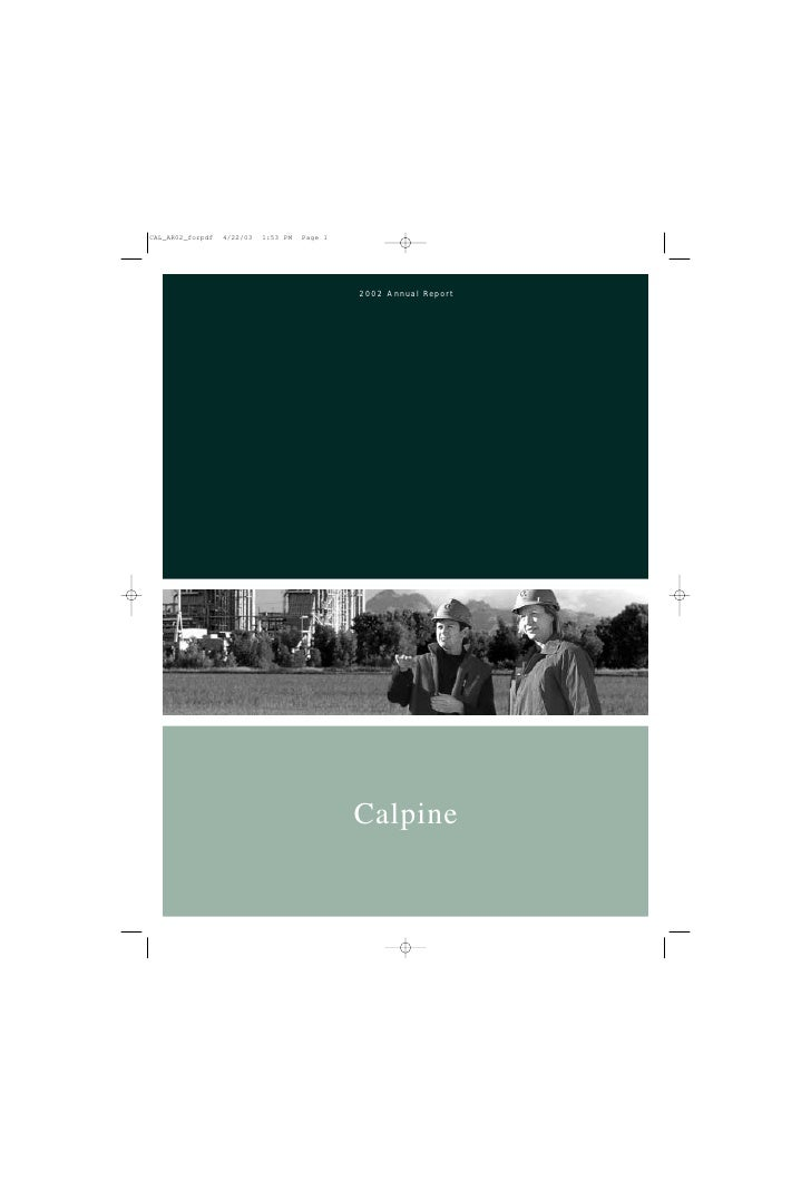 2002 Annual Report     Calpine