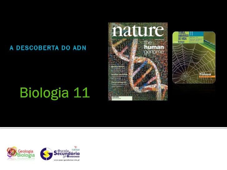    Entre 1856 e 1865 o austríaco Johann Gregor Mendel           desvendou aos princípios básicos da herança biológica,   ...