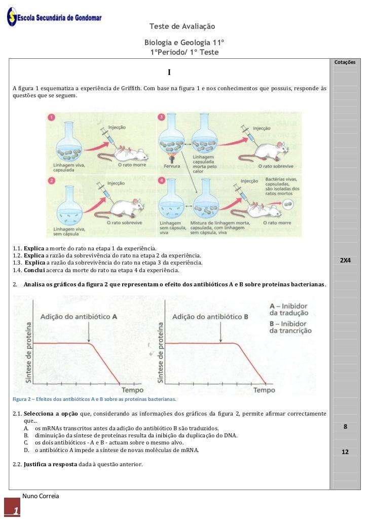 Teste de Avaliação                                                          Biologia e Geologia 11º                       ...