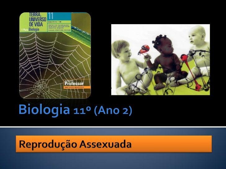 A continuidade da  vida é assegurada  pela reprodução.           Nuno Correia 10/11