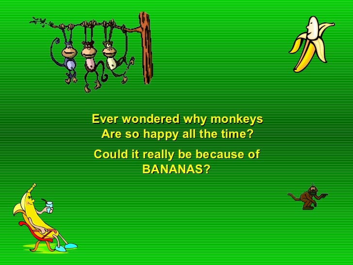 Ever wondered why monkeys Are so happy all the time?Could it really be because of         BANANAS?
