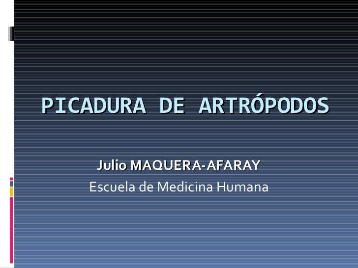 PICADURA DE ARTRÓPODOS Julio MAQUERA-AFARAY Escuela de Medicina Humana