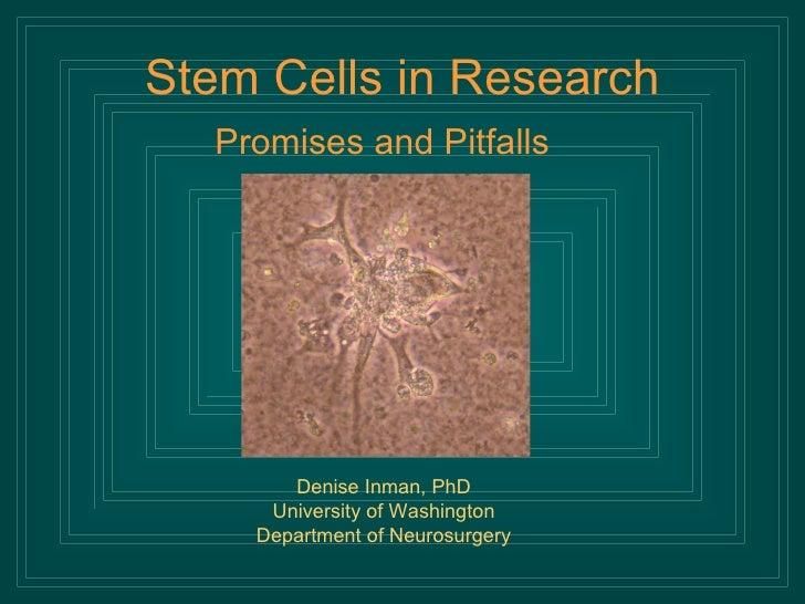 Stem Cells in Research <ul><li>Promises and Pitfalls </li></ul>Denise Inman, PhD University of Washington Department of Ne...