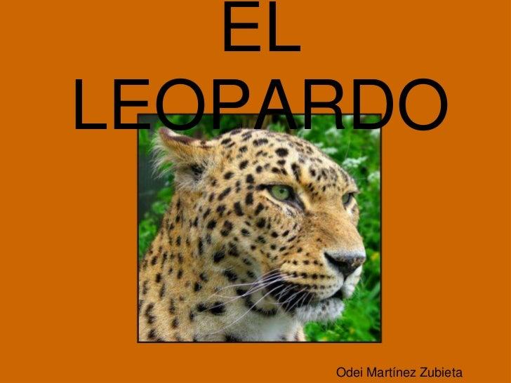 ELLEOPARDO     Odei Martínez Zubieta