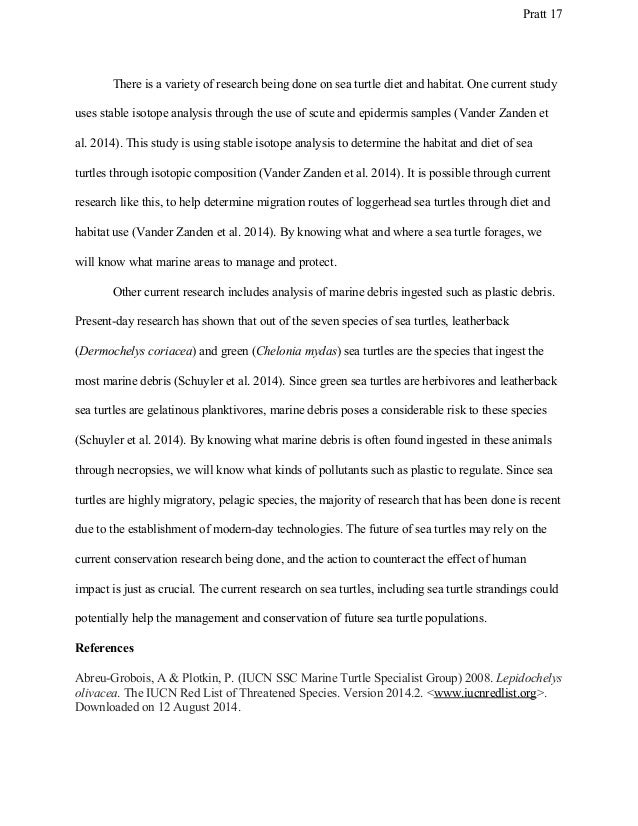 masters capstone project paper 17