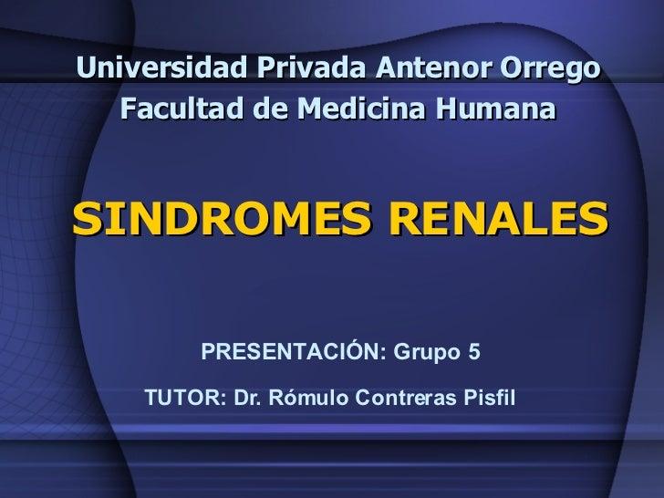 Universidad Privada Antenor Orrego Facultad de Medicina Humana SINDROMES RENALES PRESENTACIÓN: Grupo 5 TUTOR: Dr. Rómulo C...