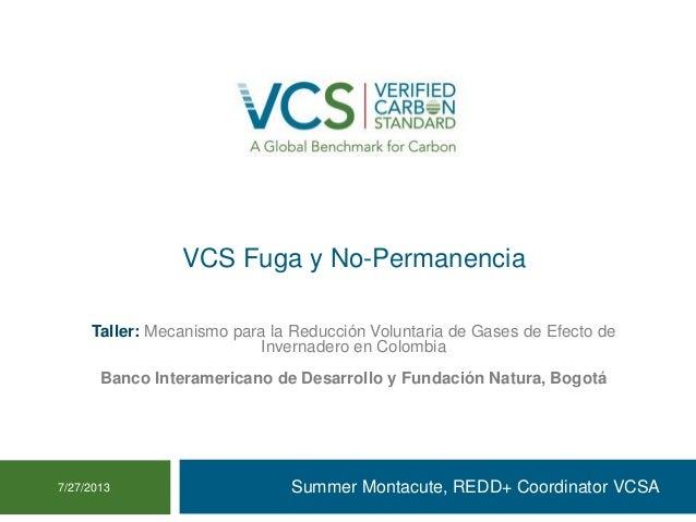 VCS Fuga y No-Permanencia Summer Montacute, REDD+ Coordinator VCSA7/27/2013 Taller: Mecanismo para la Reducción Voluntaria...