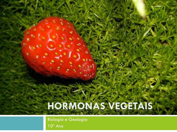 HORMONAS VEGETAIS Biologia e Geologia 10º Ano