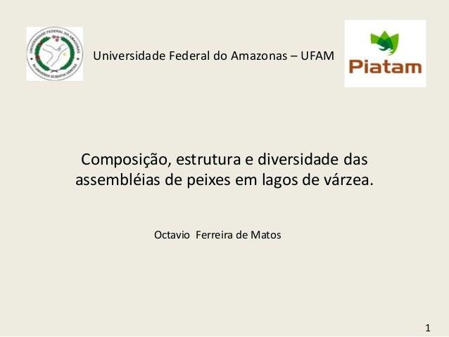 Universidade Federal do Amazonas – UFAM Composição, estrutura e diversidade dasassembléias de peixes em lagos de várzea.  ...