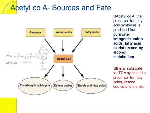 fatty acid biosynthesis MUHAMMAD MUSTANSAR FJMC LAHORE